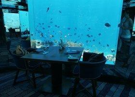 lucie-rybova-066.jpg