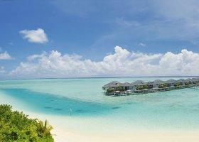 maledivy-hotel-sun-island-resort-113.jpg