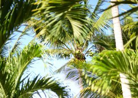 mauricius-hotel-veranda-palmar-beach-053.jpg